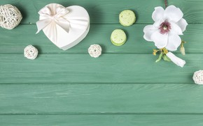 Picture flower, gift, white, composition, macaron
