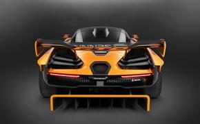 Picture Concept, McLaren, GTR, racing car, rear view, 2018, Senna