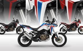 Picture honda, moto, africa twin, 2021