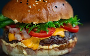 Picture Patty, bun, Burger