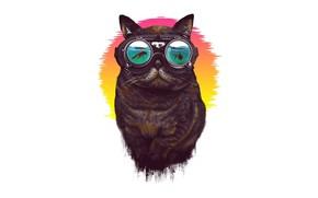 Picture Minimalism, Glasses, Cat, Style, Art, Art, Style, Cat, Minimalism, Glasses, Lou Patrick Mackay, by Lou …