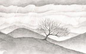 Picture nature, overcast, figure, graphics