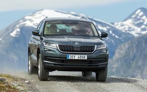 Picture snow, tops, SUV, Skoda, Skoda, 2016, Kodiaq