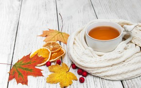 Picture autumn, leaves, colorful, scarf, autumn, leaves, cup, tea, scarf, maple, Cup of tea