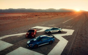 Picture rays, blue, Mustang, Ford, Shelby, GT500, three, bloody, 2019, gray-silver