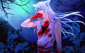 Picture blood, anime, guy, Yu Yu No Where, Youko Kurama