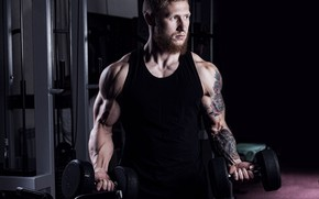 Picture look, pose, tattoo, muscle, muscle, pose, training, simulators, dumbbells, biceps, gym, gym, bodybuilder, training, dumbbells, …