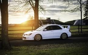 Picture Subaru, Impreza, WRX, STI, Sunset, White