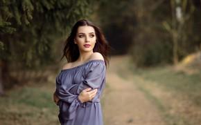 Picture road, forest, look, girl, branches, nature, makeup, dress, brunette, neckline, needles, shoulders, Victoria Dubrovskaya