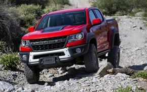 Picture red, stones, vegetation, Chevrolet, pickup, Colorado, 2019, ZR2 Bison