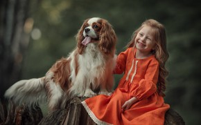 Picture joy, nature, animal, stump, dog, girl, child, dog, Spaniel, Julia Kubar