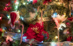 Picture decoration, flowers, branches, tape, holiday, toys, new year, Christmas, tree, light bulb