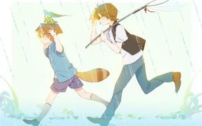Picture rain, frog, tail, book, boys, The Eccentric Family, Uchouten Kazoku