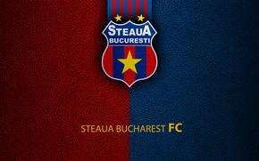 Picture wallpaper, sport, logo, football, Steaua Bucharest