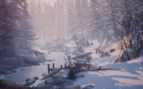 Picture nature, winter, life is strange 2