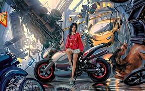Picture car, city, girl, fantasy, game, science fiction, motorcycle, sci-fi, cyberpunk, train, brunette, horse, digital art, …