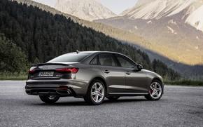 Picture forest, Audi, sedan, side, Audi A4, 2019