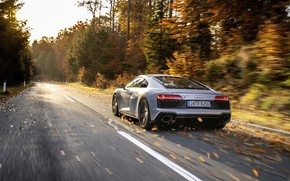 Picture Audi, Audi, sports coupe, sports car, 2019, Audi R8 V10 RWD Coupe, Florett Silver, silver …