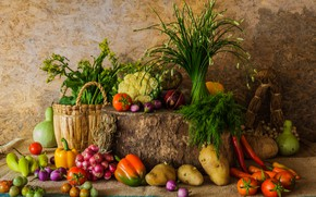 Picture autumn, harvest, pumpkin, still life, vegetables, autumn, still life, pumpkin, vegetables, harvest