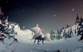Picture snow, dog, Fate / Grand Order, The destiny of a great campaign