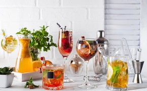 Picture ice, glasses, cocktail, fruit, cuts
