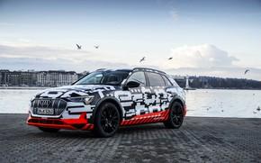 Picture Audi, shore, pavers, 2018, E-Tron Prototype