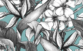 Picture flowers, grey, background, blue