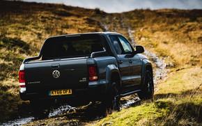 Picture Volkswagen, pickup, Amarok, Black Edition, stern, 2019