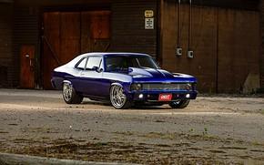 Picture Muscle, Blue, Chevy, Nova, Custom, Chevrolet Nova