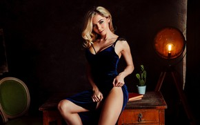 Picture look, pose, model, books, lamp, portrait, makeup, cactus, dress, hairstyle, blonde, chair, legs, twilight, beauty, …