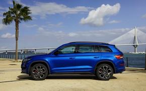 Picture 2018, crossover, SUV, Skoda, in profile, Skoda, 2019, Kodiaq RS