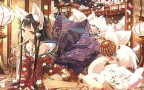 Picture Fox, Girl, Decoration, Fantasy, Fox