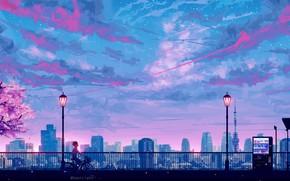 Picture skyscrapers, Tokyo, lights, railings, Tokyo, Japan, guy, promenade, art, pink clouds, Tokyo tower, the evening …