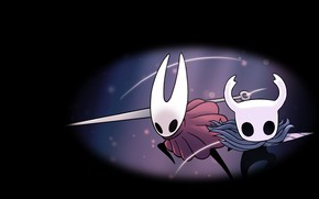 Picture Hornet, Hollow Knight, Team Cherry
