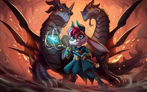 Picture the game, dragons, rabbit, Paladins
