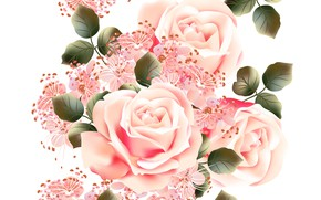 Wallpaper white, flowers, background, roses, texture