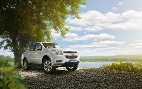 Picture tree, transport, car, pond, Chevrolet Trailblazer