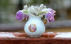 Picture drops, snow, flowers, Board, bouquet, spring, vase, pitcher, lilac, anemones, porcelain, cross, ceramics