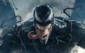 Picture language, eyes, teeth, drool, Venom, Venom