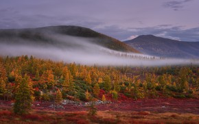 Picture autumn, forest, the sky, mountains, fog, hills, the slopes, haze