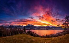 Picture the sky, trees, sunset, mountains, lake, Switzerland, Switzerland, Lake Thun, Bernese Alps, The Bernese Alps, …