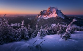 Picture winter, snow, landscape, sunset, mountains, nature, forest, Slovakia