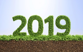 Picture texture, figures, New year, New Year, 2019