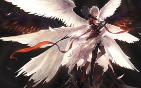 Picture angel, the demon, Shingeki no Bahamut, Rage Of Bahamut