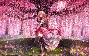 Picture flowers, tree, Touken Ranbu, Dance of swords