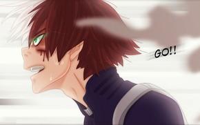 Picture anime, art, guy, Couples, Boku no Hero Academy, My hero Academy, Todoroki Shoto