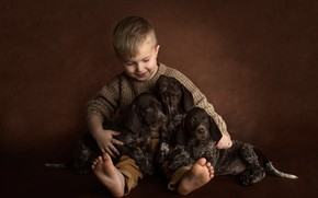 Picture dogs, background, mood, boy, puppies, trio, friends, doggie