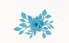 Picture white, flower, paper, background, blue