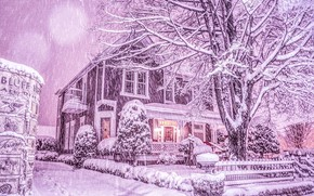 Picture winter, snow, trees, house, snowfall, Tennessee, Chattanooga, Chattanooga, Tn, winter's tale