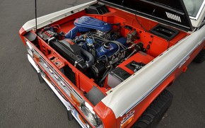 Picture Ford, 1971, motor, Wagon, Bronco, Baja Edition, Stroppe